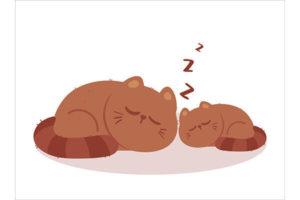 Sweet Dreams in Japanese
